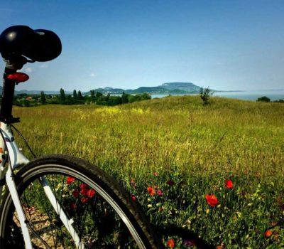 Radweg Rund um den Balaton